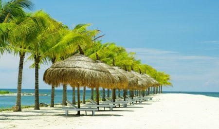 Whale-Island-Resort